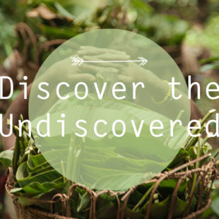 Discover the Undiscovered III