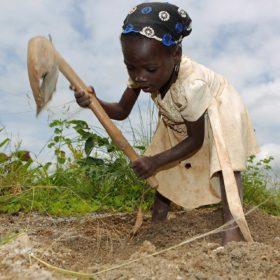 Lutte contre la traite des enfants au nord du Bénin