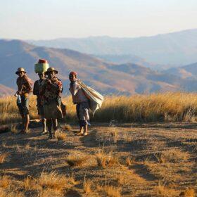 Prise en charge des personnes atteintes de Maladies tropicales négligées