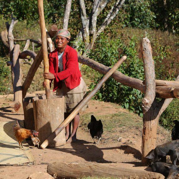 Prise en charge des personnes atteintes de Maladies tropicales négligées (gallery)